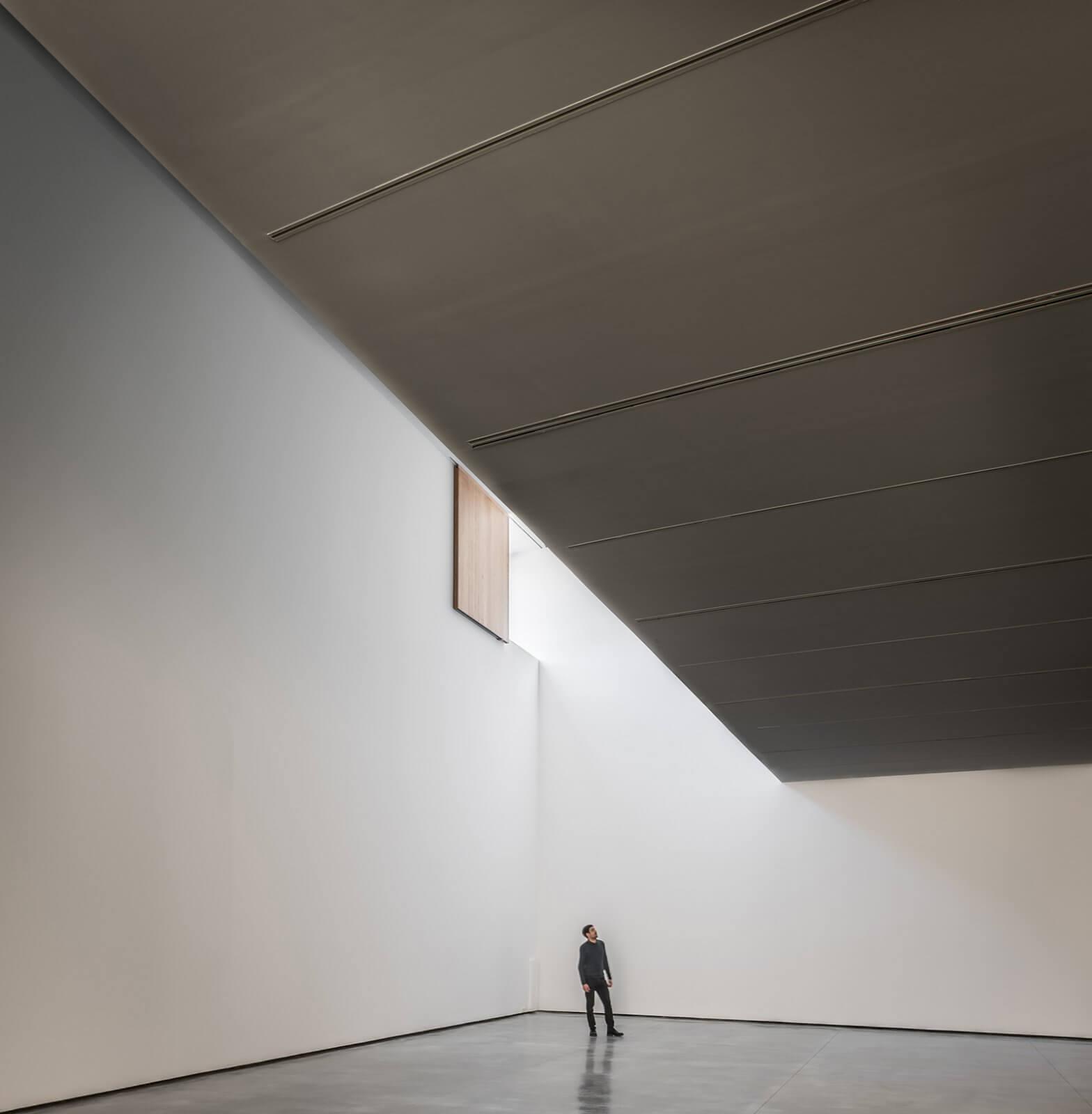 Museo de Arte Contemporáneo Helga de Alvear  - 6 45