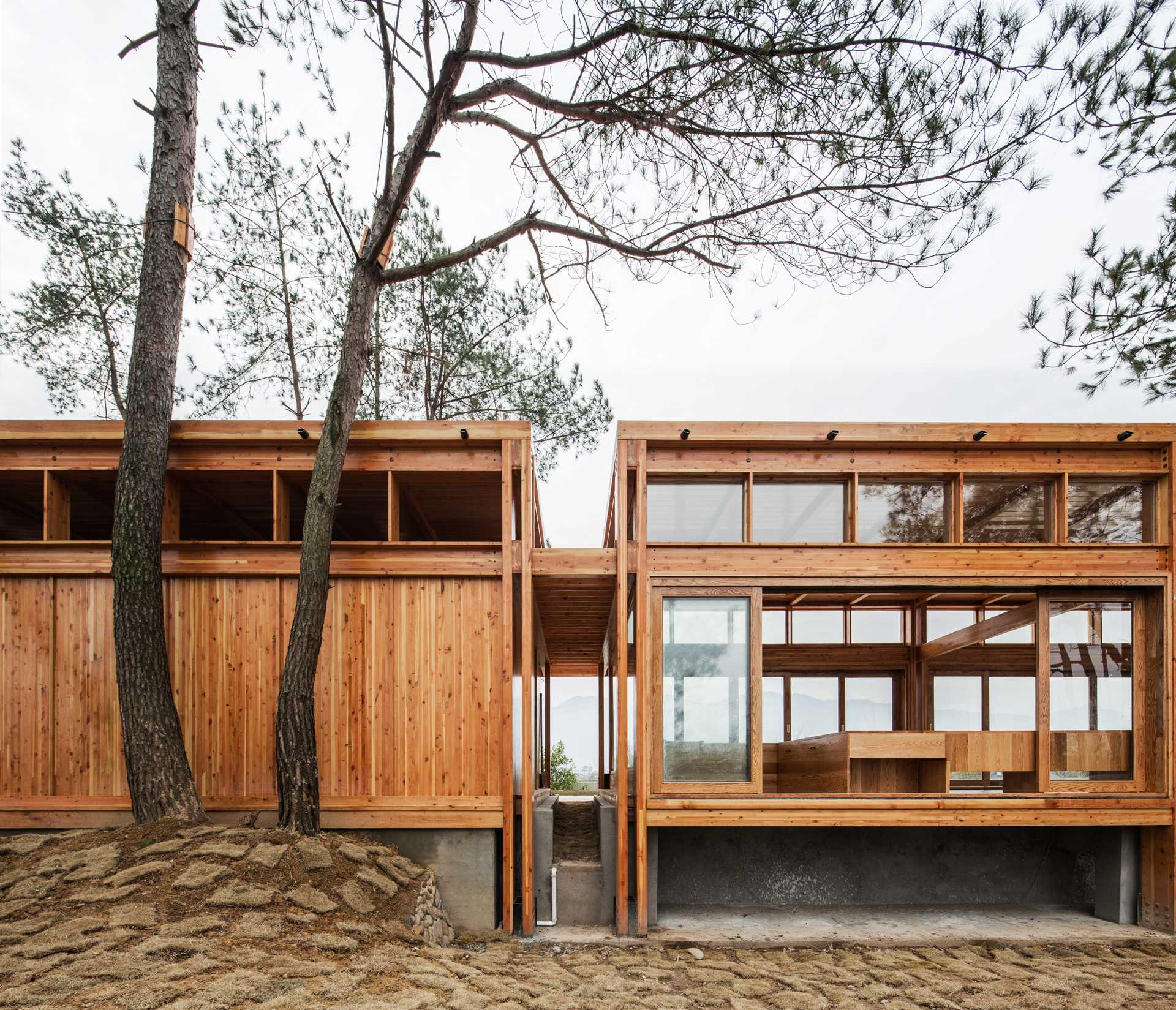 Pine Pavilion  - 17 04 37
