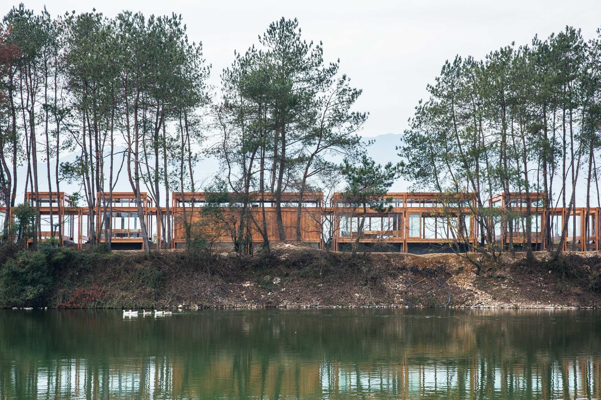 Pine Pavilion  - 19 02 33