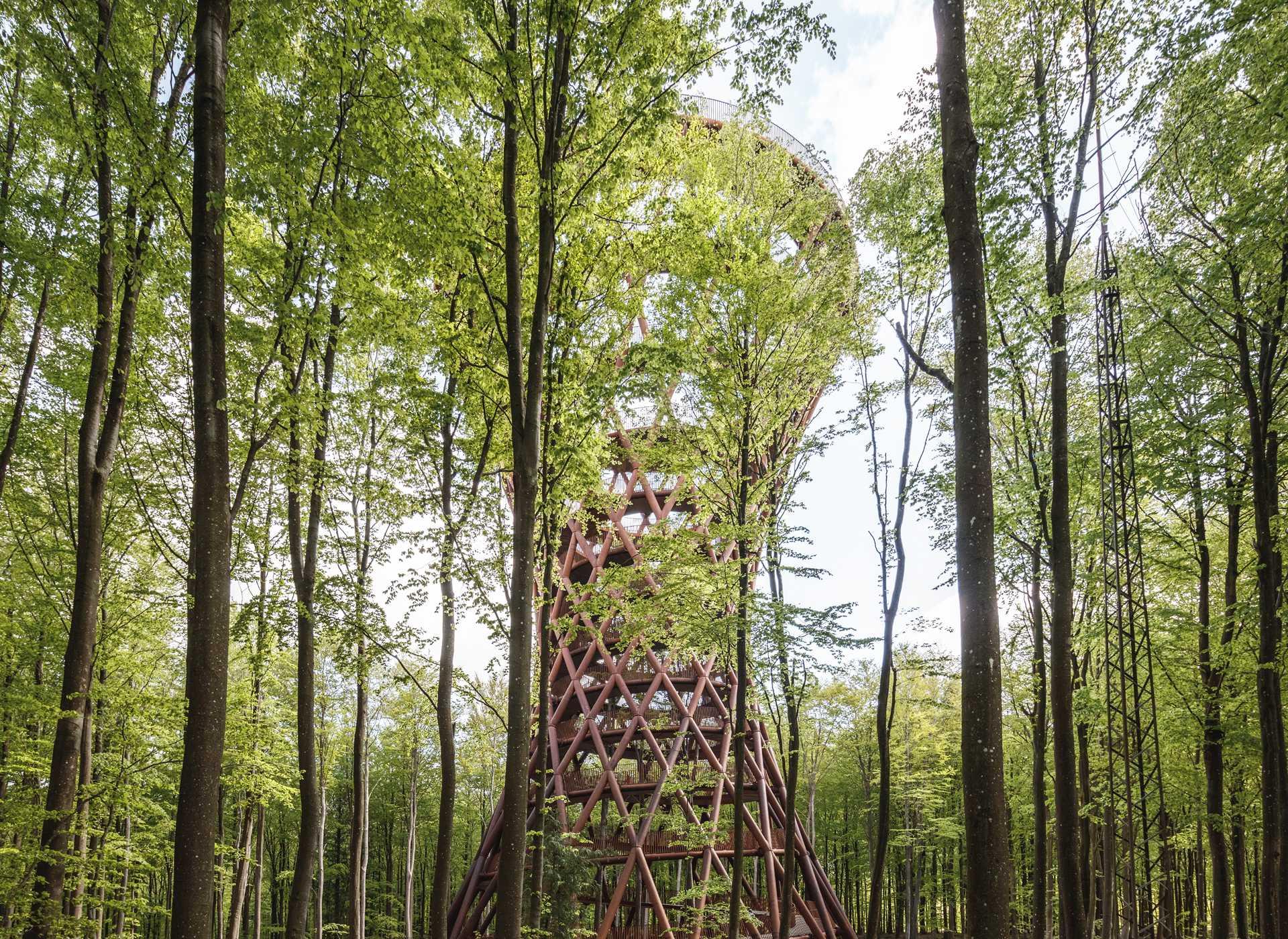 Camp Adventure Park  - 39 5 41