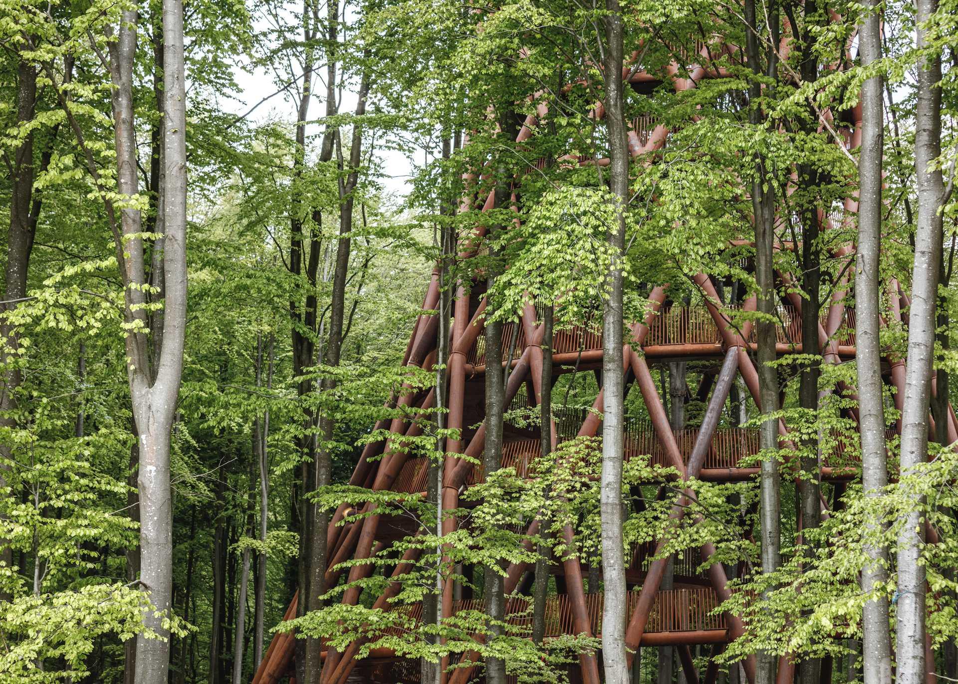 Camp Adventure Park  - 56 6 42