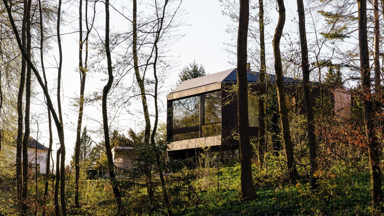 Casa Forest  - H Casa Forest 4 55